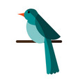 bird on branch icon image vector image