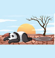 deforestation scene with dying panda vector image
