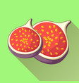 figs fruit icon with long shadow vector image