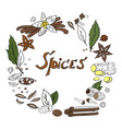 hand drwan spices wreath isolated on white vector image vector image