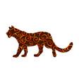 lioness wildcat predator spiral pattern color vector image