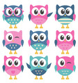 set of colorful funny owls vector image vector image