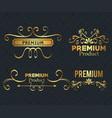 set premium quality golden frames vector image