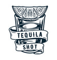 tequila shot cocktail with tropical lime and salt vector image vector image