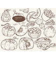 vegetables pumpkin vector image vector image
