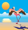 flamingo on the shore vector image