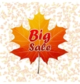 Autumn sale typography poster plus EPS10 vector image