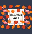 autumn sale background with leaves flamingo and vector image vector image