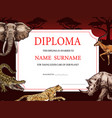 diploma with african wild sketch animals design vector image vector image