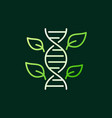 dna spiral with green leaves icon in thin vector image