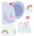 elephant rainbows cartoon cute animal characters vector image