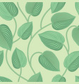 floral seamless pattern leaves background vector image