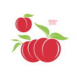 Peach Isolated fruit on white background vector image vector image