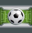 soccer field brochure vector image vector image