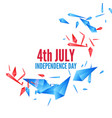 united stated independence day vector image vector image
