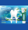 whitening toothpaste ads mint leaves background vector image vector image