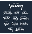 Calligraphic set of quote Hello months of the year vector image