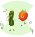 Fun with a rake cucumber and tomato with a bucket vector image vector image