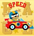 funny animal car racer cartoon