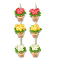 set flower pots hanging on rope isolated vector image