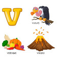 v alphabet vector image