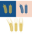 wheat and barley icon vector image vector image