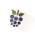 blackberry icon with shadow flat vector image vector image