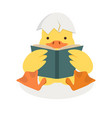 duck reading a book with broken egg shell vector image