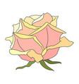 rose flower clip art vector image
