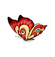 stylized fly butterfly for wedding invitations vector image