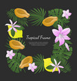 tropical frame banner template with bright exotic vector image vector image