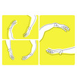 set of various hands movements vector image