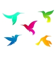 Flying color hummingbirds vector | Price: 1 Credit (USD $1)