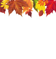 Leaves Border vector image vector image