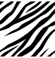 Seamless pattern with zebra stripes design for