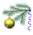 spruce branch with a christmas ball vector image vector image