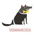tasmanian devil cartoon australian animal vector image