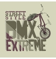 BMX Riding Typography vector image vector image