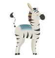 cartoon zebra indian vector image