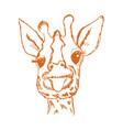 giraffe cub vector image vector image