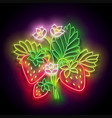 glow strawberry bush with flowers organic berry vector image