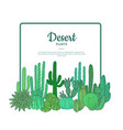 hand drawn cacti plants cactuses pattern vector image
