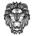 Lion Head Graphic vector image
