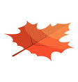 red maple leaf icon isometric style vector image vector image