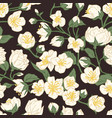 seamless pattern blossomed jasmine flowers on vector image