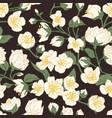 seamless pattern blossomed jasmine flowers vector image