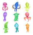colorful squids and octopuses set sea creatures vector image
