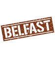 belfast brown square stamp vector image vector image
