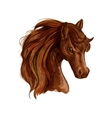 Brown arabian mare horse sketch for equine design vector image vector image