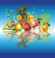 fruits composition3 vector image vector image